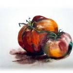 mes-tomates-sont-brillantes-57569257